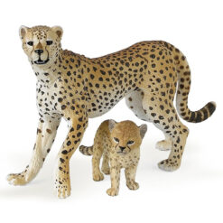 Cheetah met jong