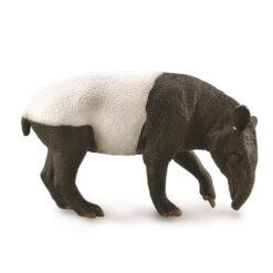 Collecta indische tapir