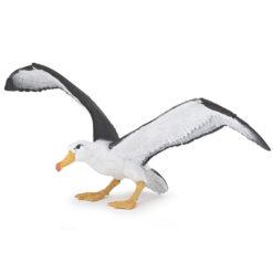 Papo albatros