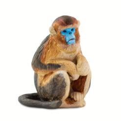 Safari snub nosed monkey
