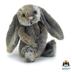 bashful cottontail bunny
