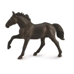 nonius stallion