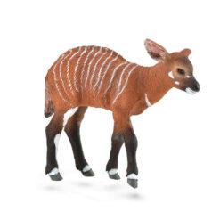 CollectaAntilope Bongo Kalf