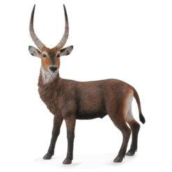CollectaWaterbok