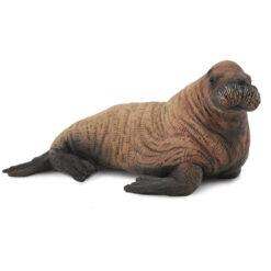Collecta Walrus jong