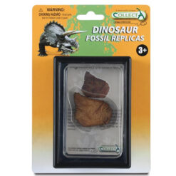 Stegosaurus dorsal plate