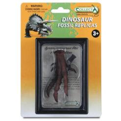 Tyrannosaurus rex foot