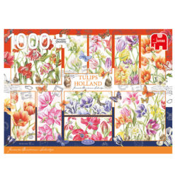 Jumbo 1000 hollandse tulpen