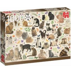 Franciens katten 1000 pcs