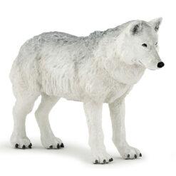 Poolwolf