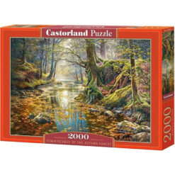 Reminiscence of the autumn forest 2000pcs
