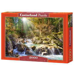 The forest stream 2000pcs