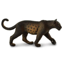 safari zwarte panter