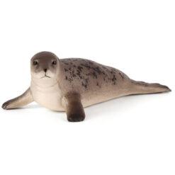 Mojo Grey seal