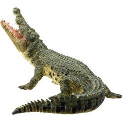 Mojo krokodil
