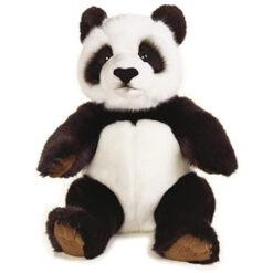National geografic panda